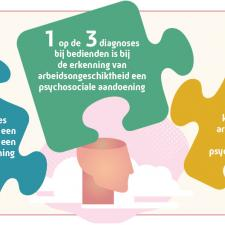 Voornaamste cijfers studie santé mental en incap